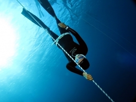 Freediving - SSI Dive Center 735185