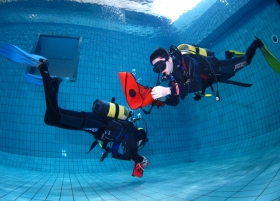 Cursos de mergulho - SSI Dive Center 735185
